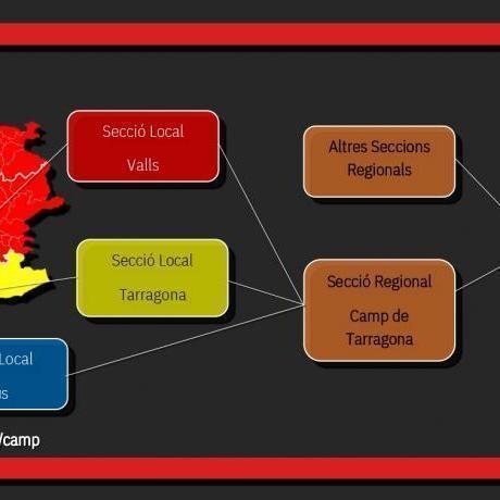 Secció Local de Reus (Baix Camp i Priorat), Secció Local de Tarragona (Tarragonès) i Secció Local de Valls (Alt Camp i Conca de Barberà).