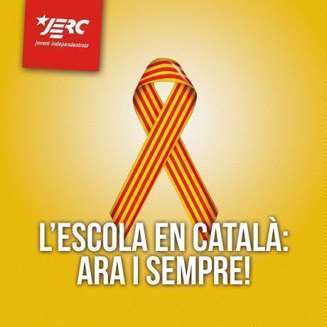No ens rendirem: seguim lluitant pel nostre sistema educatiu, públic, en català i de qualitat!