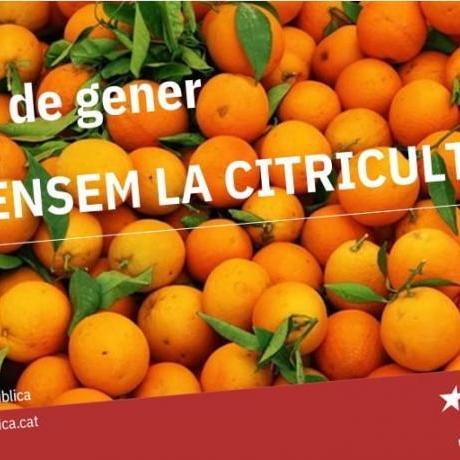 Defensem la citricultura!