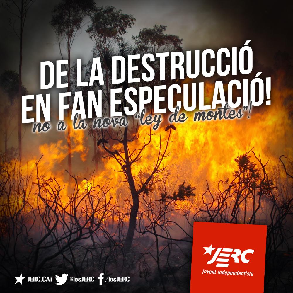 De la destrucció en fan especulació!