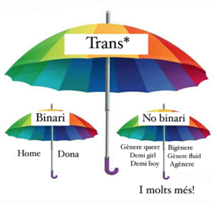 Les persones del col·lectiu no-binari poden aprofundir en els paraigües o simplement quedar-se en la superfície pel refús a les etiquetes