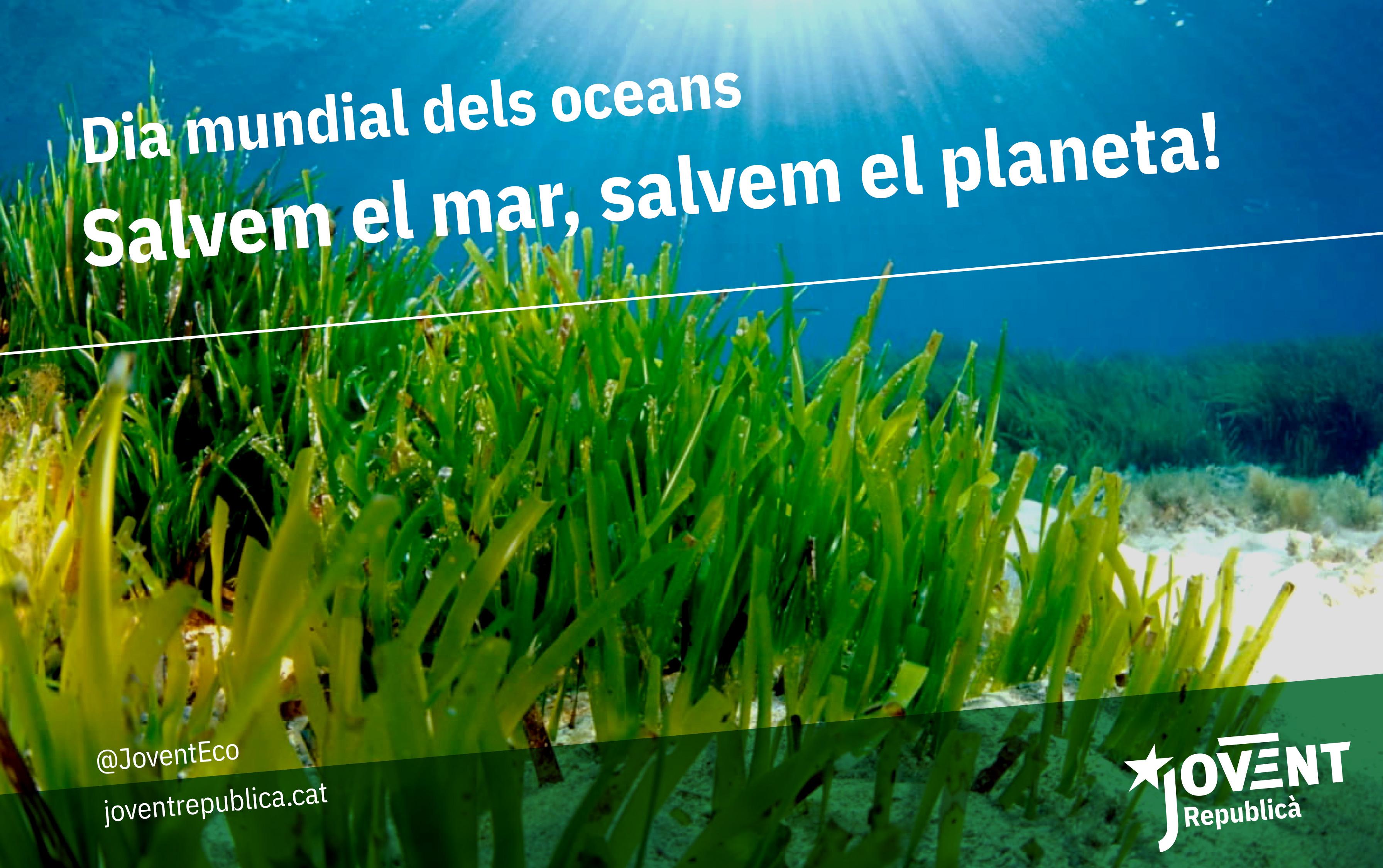 Per salvar els oceans calen mesures globals que incloguin tots els ecosistemes i es capgiri el nostre model socioeconòmic