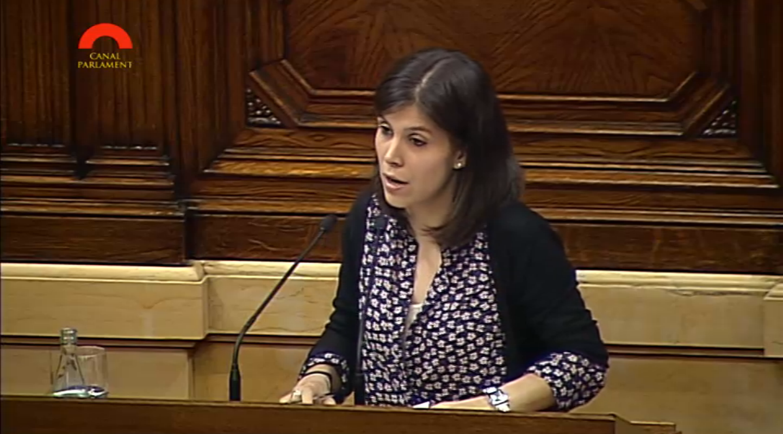 Marta Villata al Parlament